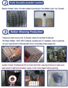 Durable Rattan Sun Lounger with European Design pictures & photos