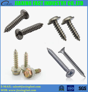 Self Tapping Screws DIN968 DIN 7971 DIN 7976 DIN 7982 DIN 7983 DIN 7505 DIN 7972 DIN34819 ISO 1482 ISO 7051 JIS B 1115 pictures & photos
