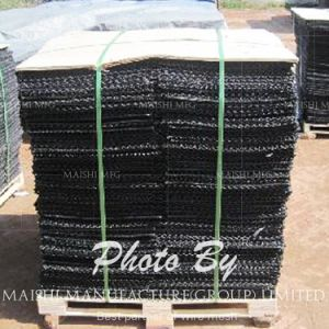 Oyster Plastic Nets pictures & photos