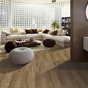 Feng - Polypropylene Bcf Organic Wall to Wall Carpet pictures & photos