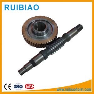 Construction Elevetaor Hoist Forging Worm Gear and Worm for Machinery pictures & photos