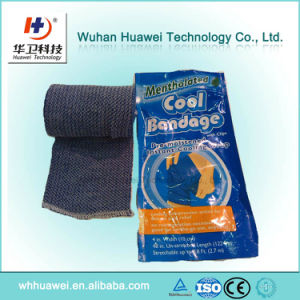 Typical Infrared Pain Relief Pad with Chinese Patent pictures & photos