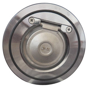 Wafer Swing Check Valve, Sandwich Check Valve (HY. 3101) pictures & photos