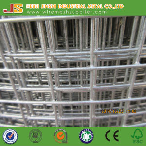 China Factory for Welded Mesh Used for Animal and Farm pictures & photos