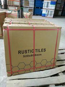Building Material Six Corners Hexagonal Ceramic Floor Tile pictures & photos