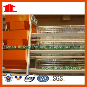 Jinfeng Poultry Cage for Layer pictures & photos