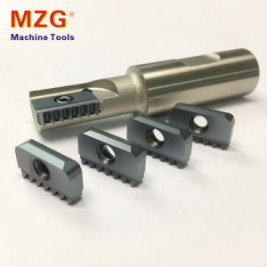 Single Twim ISO Standard Thread Mill Milling Cutting Toolholder pictures & photos