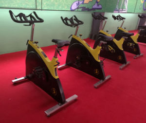 2015 Most Popular Spinning Bike (SK-A6019) pictures & photos