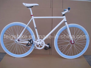 Good Quality Road Bike Fixie Bicycle (FP-FGB005) pictures & photos