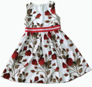 Children Clothing Girl Dress Baby Dress Skirt, Kids Wear (SQD-108) pictures & photos