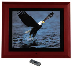 "10"" Digital Photo Frame (DPF1040AAN-R5)"