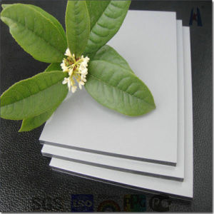 Colorful and 15-20years Warranty Decoration Material--Aluminum Plastic Composite Panel pictures & photos