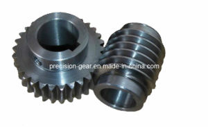 Carbon Steel Worm Gear & Worm