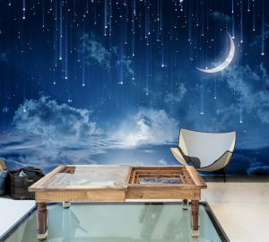 Starry Night Blue Sky Moon Wallpaper Mysterious Moonlit Wall Mural pictures & photos