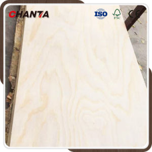 18mm Radiate Pine Plywood Larch Plywood for Furniture pictures & photos