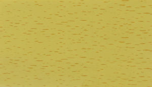 Hot Stamping Foil(005-3)