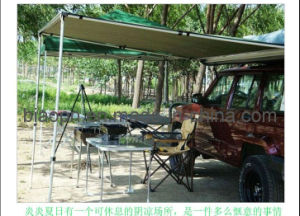 Beauty Car Awning (JLT-01C) pictures & photos