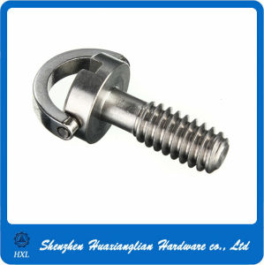 Customized stainless Steel D Ring Screws pictures & photos