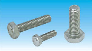 DIN933 Hexgon Head Bolt Stainless Steel pictures & photos