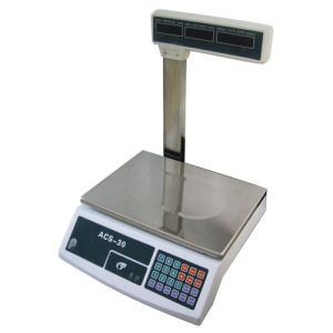 Electronic Platform Scale (ACS-620A)