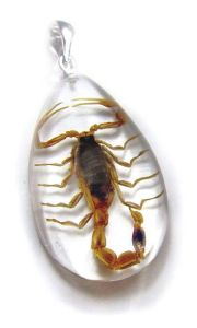 Insect Necklace-Scorpion, Clear ( SD07)