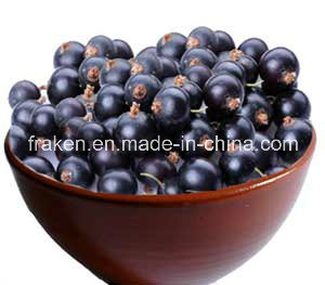 High Quality 5: 1 10: 1 20: 1 Acai Berry Extract pictures & photos