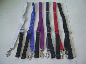 Dog Lead pictures & photos