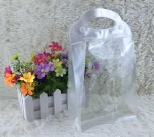 Plastic Bag for Cosmetic and Package pictures & photos