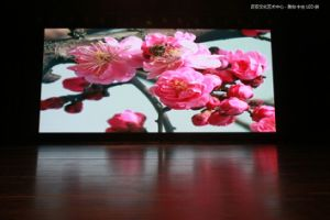 P5 Indoor Full Color LED Screen (LED Display) pictures & photos