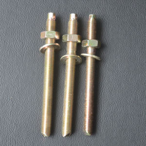 Chemical Anchor Bolt External Hex Head Yzp pictures & photos