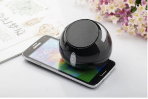 Wjolesale Price Muilti Function Bluetooth Speaker for Free Sample pictures & photos