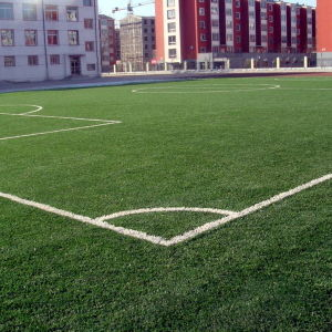 Professional Football Synthetic Turf Artificial Grass with Factory Price pictures & photos