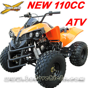 New 110cc Quad Bike for Young pictures & photos