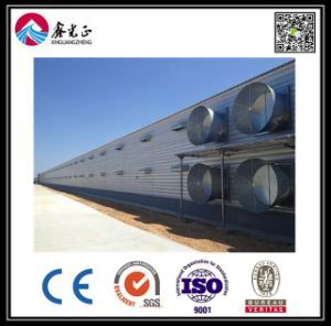 Steel Structure Chicken Farm (BYCH-009) pictures & photos