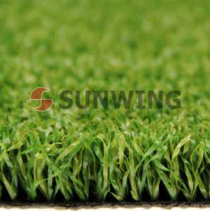 Carpet Lawn Synthetic Turf Fake Football Chinese Artificial Grass pictures & photos