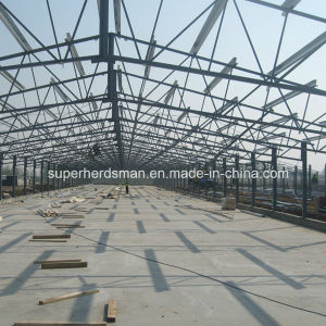 Professional Chicken House Construction with Steel Structure pictures & photos