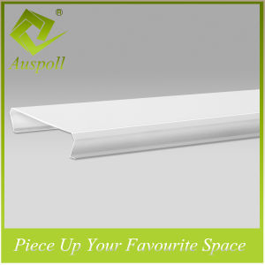 Exterior S-Shaped Strip Aluminum Ceiling pictures & photos
