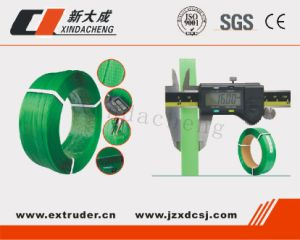 Pet Strap Belt Making Machine pictures & photos