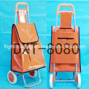 Popular Shopping Trolley pictures & photos