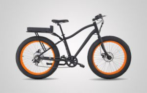 The Latest 48V/12ah 500W Li-Battery Fat Electric Bicycle (LEADER-LY01) pictures & photos