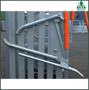 Hot Dipped Galvanized Hydra Headlock of Cattle Crush pictures & photos