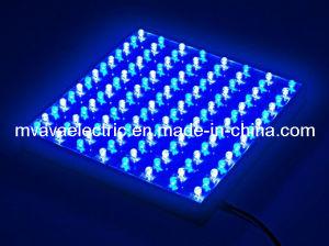 112 Blue + White LED Aquarium & Plant Grow Light Panel (MV-AL555WB)