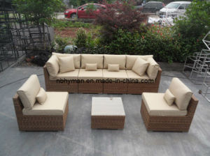 Home Furniture Rattan Sofa Set