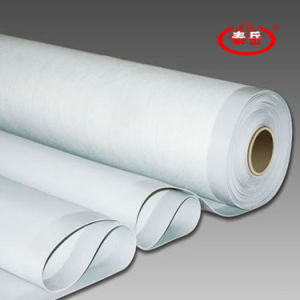 Polyvinyl Chloride (PVC) Waterproof Membrane pictures & photos