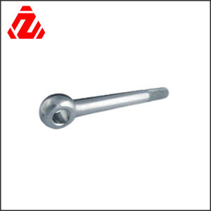 High Quality Stainless Steel Eye Bolts (M4-M100) pictures & photos