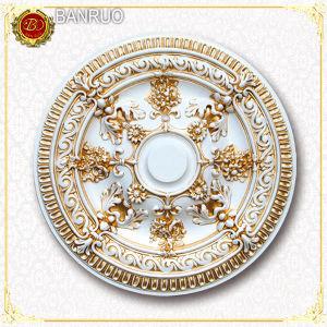 Plastic Medallion (BRP10-660-F1) pictures & photos