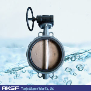 Stainless Steel Disc Butterfly Valve