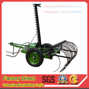 Farm Machinery Lawn Mower Yto Tractor Trailed Hayraker pictures & photos