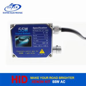 2016 Evitek High Quality HID Xenon Tn-3004 55W 12V AC Big Ballast pictures & photos