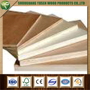 Poplar Plywood Panel for Furniture Use pictures & photos
